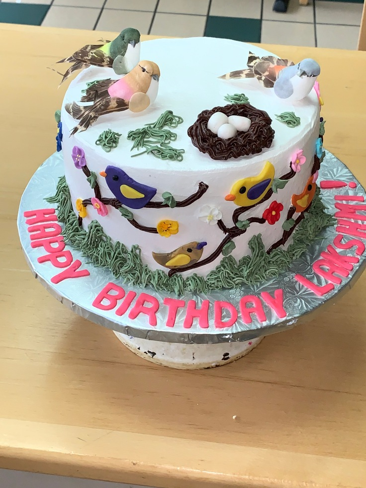 Raspberry dark chocolate 1st birthday cake with nature and birds